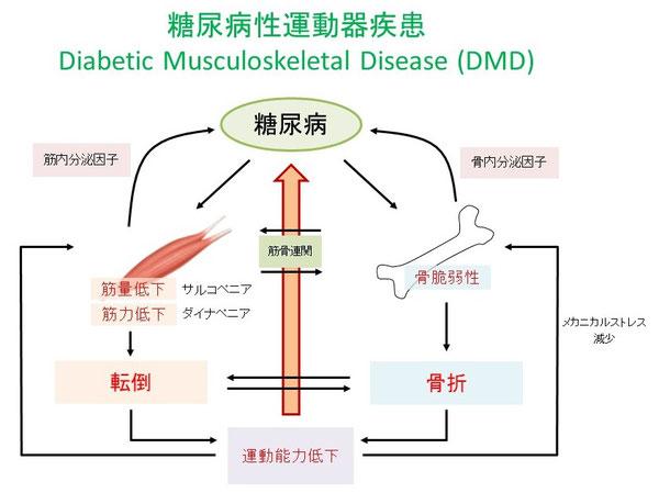 糖尿病運動器疾患
